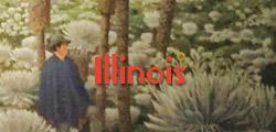 illinois-thumbnail