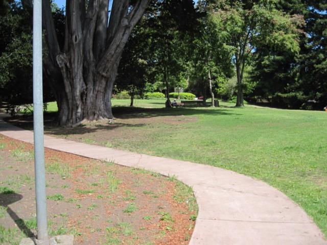Live Oak Park Walkway