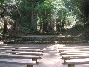 Redwood amphitheater at Armstrong Redwoods State Park