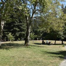 Lawn and picnic area, Temescal Regional Park - Oakland CA