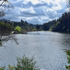 View south over lake,Temescal Regional Park - Oakland CA