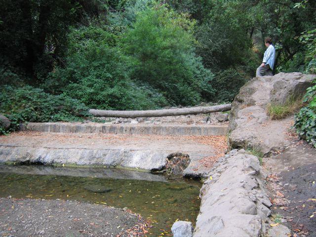 Sausal Creek, at Diamond Canyon Park