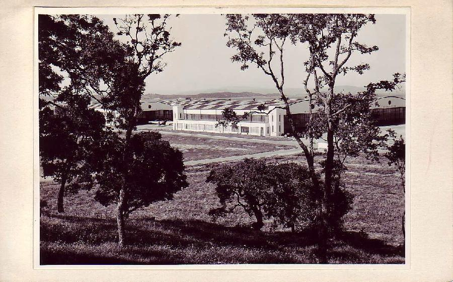 Hamilton Field Hangars
