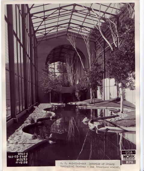San Francisco Zoo Aviary, Interior