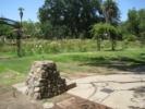 McKinley Park Water Fountain and Rose Garden
