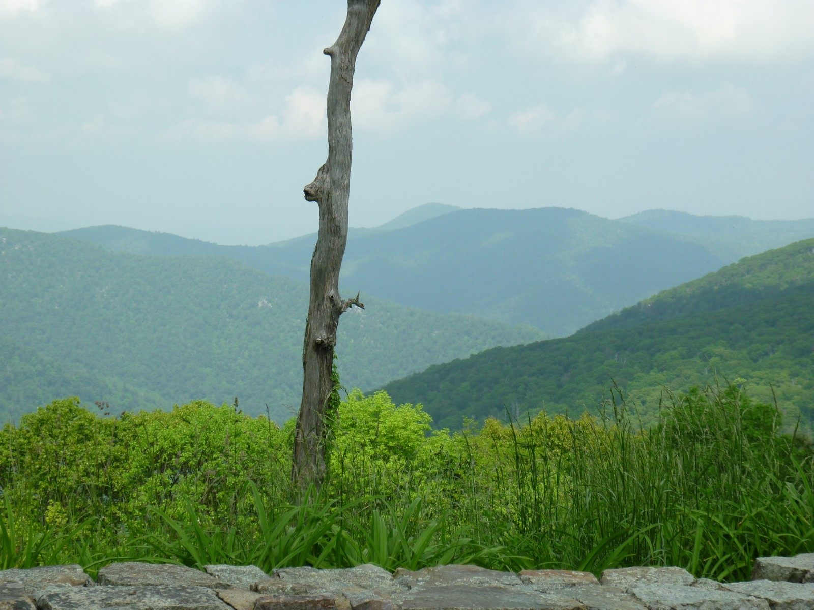 Skyline Drive Rock Wall and View