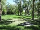 Roosevelt Park, Albuquerque, New Mexico