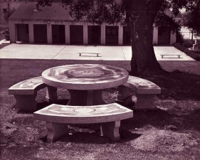 Jane Massey's petrachome table