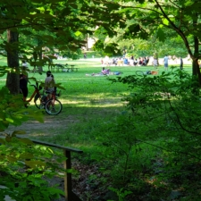 Picnic area near Pierce Mill, Rock Creek Park - Washington DC