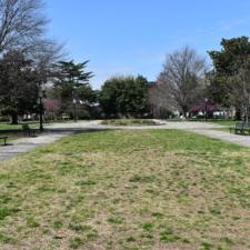 Folger Park - Washington DC