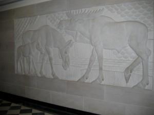 Department of the Interior Moose Relief