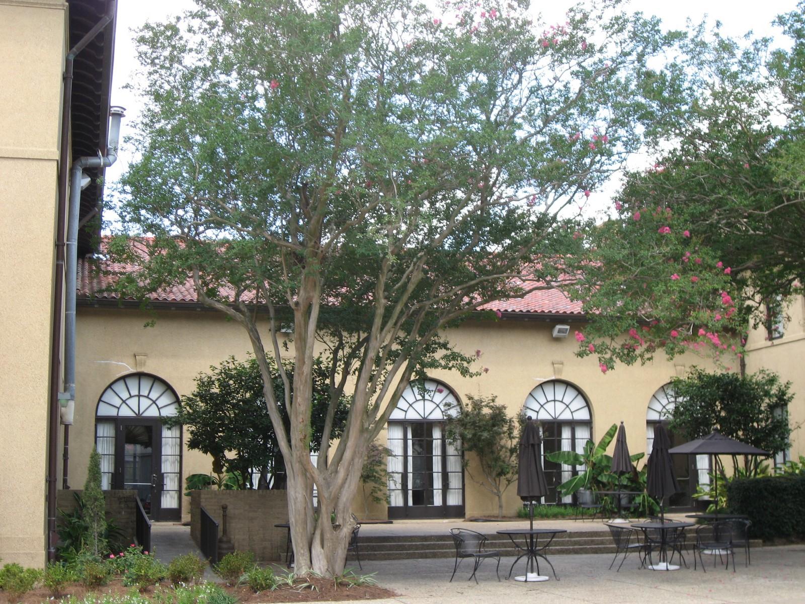 LSU Faculty Club