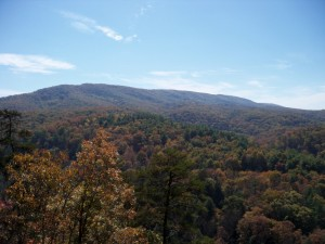 Green Ridge State Forest