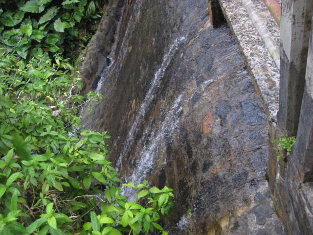El Yunque National Forest, El Baño Grande Rock Wall