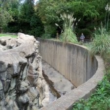 Andean Bear exhibit, National Zoo - Washington DC