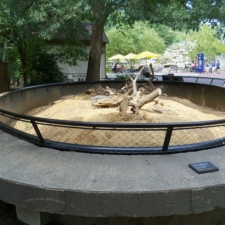 Prairie dog exhibit, National Zoo - Washington DC