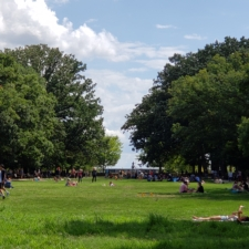 Lawn area, Meridian Hill Park - Washington DC
