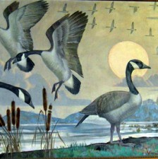 """""""Wild Geese"""""""