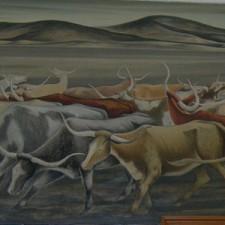 """""""Long Horns"""""""