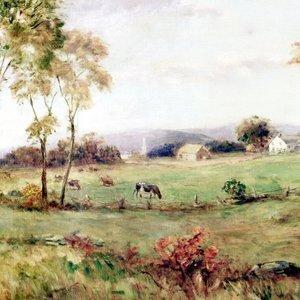 """""""Farm Scene"""""""