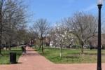 Marion Park - Washington DC