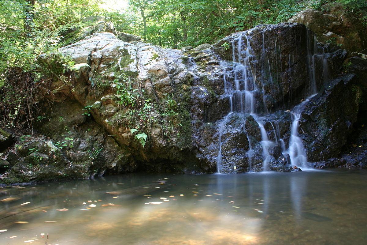 Image result for patapsco state park