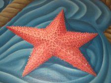 Starfish, Hiler Mural Detail