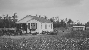 Dyess Housing. Five hundred homes were constructed at the colony. They included acreage, a barn, a chicken coop, and a mule.