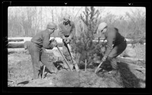 Planting trees, Mammoth Cave National Park, Kentucky
