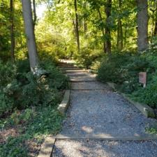 Path at National Arboretum - Washington DC