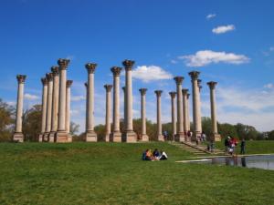 National Arboretum - Washington DC