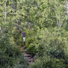 Alta-Brighton Trailhead in Little Cottonwood Canyon - Alta UT