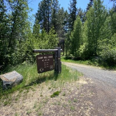 Camp Mill Creek