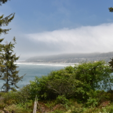 View fromLookout Rock, Patrick's Point State Park - Trinidad CA
