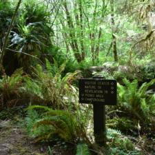 Trail sign in Prairie Creek Redwoods State Park - Orick CA