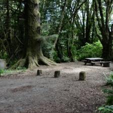 Campsite atPrairie Creek Redwoods State Park - Orick CA