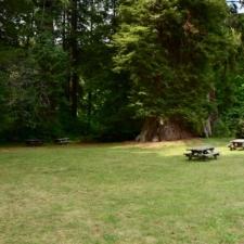 Picnic area, Prairie Creek Redwoods State Park - Orick CA