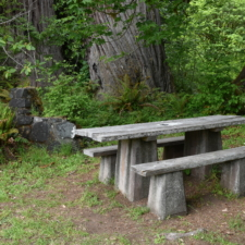 Table and stoveat picnic area, Prairie Creek Redwoods State Park - Orick CA