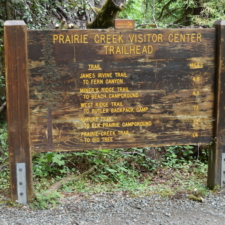 Trail sign behind visitor's center in Prairie Creek Redwoods State Park - Orick CA
