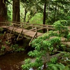 Wooden foot bridge behind visitor's center in Prairie Creek Redwoods State Park - Orick CA
