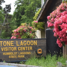 Stone Lagoon Visitor Center,Humboldt Lagoons State Park - Trinidad CA
