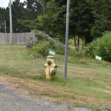 Fire hydrant - Loleta CA