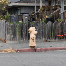 Fire hydrant - Fortuna CA