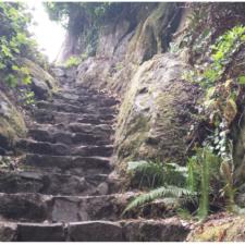 Steps to Ceremonial Rock,Patrick's Point State Park - Trinidad CA