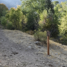 Salt Creek Trailhead - Mt Nebo UT