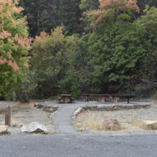 Campsite C,Bear Canyon campground - Mt Nebo UT