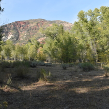 View up valley toward former CCC camp F-9 - Mt Nebo UT