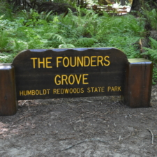 Sign at Founders Grove -Humboldt Redwoods State Park CA