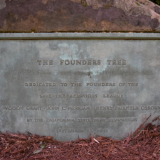 Save the Redwoods League plaque atFounders Grove -Humboldt Redwoods State Park CA