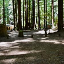 Burlington campground - Humboldt Redwoods State Park CA